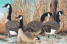 """Canada Goose Fabric Panel Digitally Printed Premium Cotton 28"""" x 44"""""""