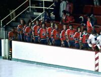 Rare 1973 - 74 Only Season WHA New Jersey Knights Picture Color 8 X 10 Photo