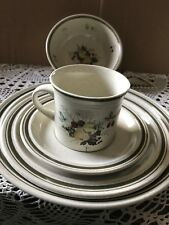 Royal Doulton Lambeth Stoneware Cornwall 5 piece place setting