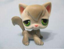 Littlest Pet Shop Authentic # 511 Orange Pink Swirl Angora Cat Green Eyes