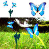 Twin Solar Powered Flying Fluttering Blue Butterflies Morpho for Garden Plants