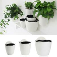 Self-watering Plant Flower Pot Wall Hanging Planter Home Garden Office Decor