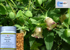 DR T&T ™ 100g Dang Shen (Radix Codonopsis)concentrated powder 1:7