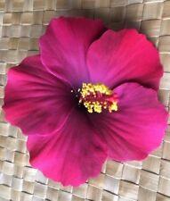 "4.3"" inch Hawaiian Foam Hibiscus Flower Hair PICK  PINK PURPLE"