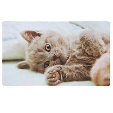 Türmatte Fußmatte CAT Katze Landhaus Franske Bodenmatte Türvorleger