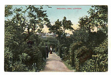 Brockwell Park - London Photo Postcard c1905 / Lambeth