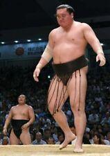 Official japanese sumo mawashi (belt)