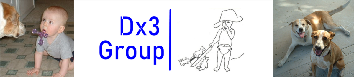 Dx3 Group