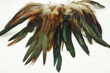 "25+ NATURAL DARK WITH GINGER ROOSTER CRAFT SCHLAPPEN FEATHERS 5""L-7""L"