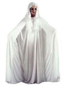 White Gossamer Ghost Haunted Spirit Attractive Vamp Adult Halloween Costume