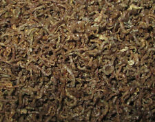 Freeze Dried Whole Bloodworms - Everything Aquatic