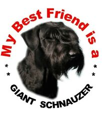 2 Giant Schnauzer Car Stickers - Starprint