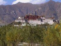 Tibet Adventures DVD