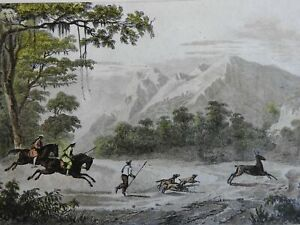 Luzon Philippines Mount Mariveles 1839Hunting Dogs Scene engraved print