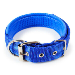Dog Collar Padded Eyelet Nylon Metal Pet Puppy Cat Adjustable Collars Blue UK
