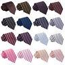 DQT Premium Single Stripe Formal Casual Business Work Standard Mens Classic Tie