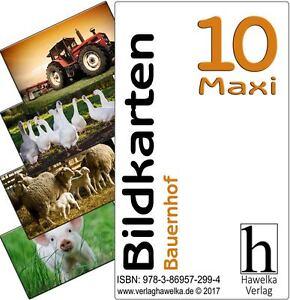 Bildkarten 10 -Maxi- Bauernhof - (extra große Fotokarten)