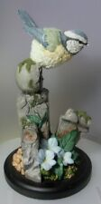 COUNTRY ARTISTS BLUE TIT ON EDGING STONE 241076 BIRDS