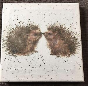 Hedgehog Print Canvas