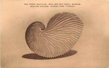 Vintage Postcard; Paper Nautilus, Rollins College Shell Museum, Winter Park Fl