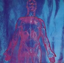Nirvana Sliver 7 Inch Vinyl Single 45rpm 2010 Reissue