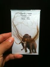 1x Veritable Poils de mammouth Laineux!! / 1x Guenine wooly mammoth hair!!