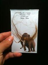 1x Veritable Poils de mammouth Laineux!! / 1x Guenine wooly mammoth hair!!