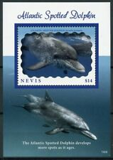 Nevis 2019 MNH Atlantic Spotted Dolphin 1v S/S Dolphins Marine Animals Stamps