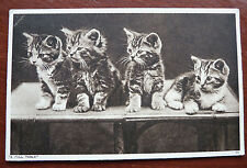 """Vintage Cat Postcard- Cute Tabby Kittens, Photochrom- """" Full Table"""" Posted 1942"""