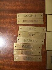 Halter Name plate brass Lady Harley Cookie Kinder Corina Toy Max Premium