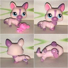 Authentic Littlest Petshop #1645 Pink Gorgi Dog Blue Eyes Chien LPS Accessorie