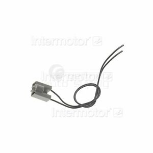 Standard Ignition Fog Light Socket S529