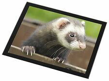 Ferret Print Black Rim Glass Placemat Animal Table Gift, FER-2GP