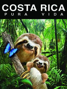 "COSTA RICA PURA VIDA NATURE WILDLIFE ART POSTER OSO MAMA SLOTH  18X24"" CRP8"