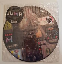 MADONNA - JUMP - PICTURE DISC NEUF