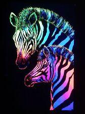"1973 VINTAGE BLACKLIGHT POSTER BEAUTIFUL ANIMALS PAIR ""ZEBRAS"" VERY RARE Classic"