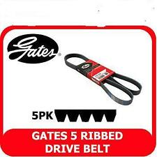 MGF MGTF 1.6 1.8 1995-2005  Gates Alternator Drive Belt  5PK738