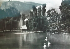 TRENTO - LAGO DEI CIGNI - 1955