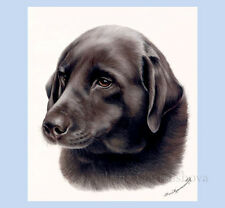Dog Print Brown Labrador by Irina Garmashova