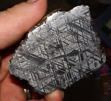 Amazing 406 Gm. Muonionalusta Etched Meteorite End Cut