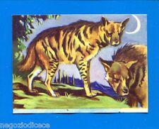 ANIMALI - Lampo 1964 - Figurina-Sticker n. 79 - IENA -New