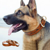 Real Leather Pet Dog Collars with Gold Metal Buckle Strong for Medium Large Dogs