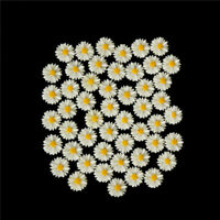 50pcs white daisy flower resin flatback cabochon DIY jewelry decoration In FG