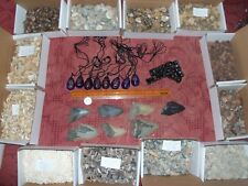 50 items. Megalodon fossil shark tooth ammonites dinosaur tooth scorpion, teeth