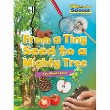 Fundamental Science Key Stage 1: From a Tiny Seed to a Mighty Tree: How Plants G
