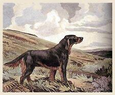 GORDON SETTER GUNDOG DOG ART ENGRAVING PRINT by Ruben Ward Binks - REDUCED