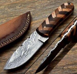 Custom HAND FORGED DAMASCUS Hunting Knife W/ Cocobolo Wood & Olive Wood Handle