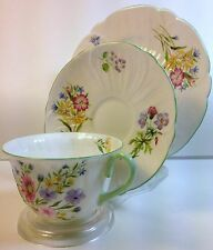Shelley China  Trio in Wild Flowers Pattern 13668 on Oleander