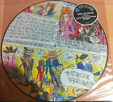 """THE DOGS D'AMOUR """"Trail Of Tears """"-Vinyl 12"""", Limited Edition, Picture -1989 UK"""