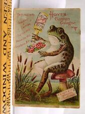 E.W Hoyt & Co Hoyt's German Cologne Anthropomorphic Frog Toadstool Flowers F38